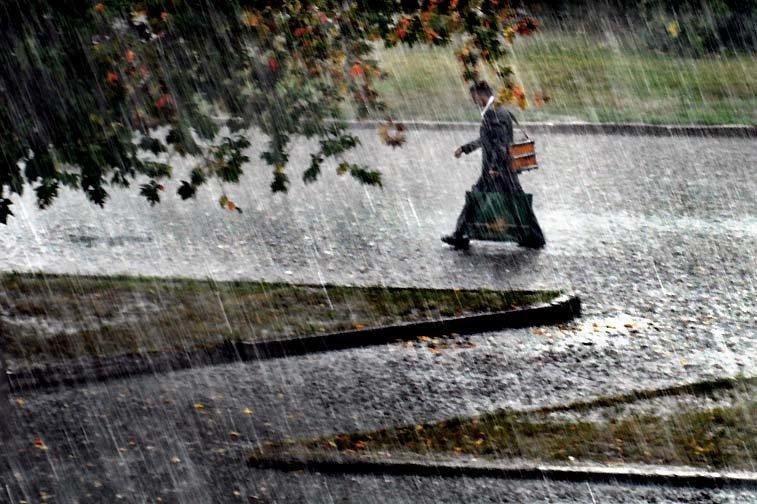 художник и дождь - Николай Пушилин