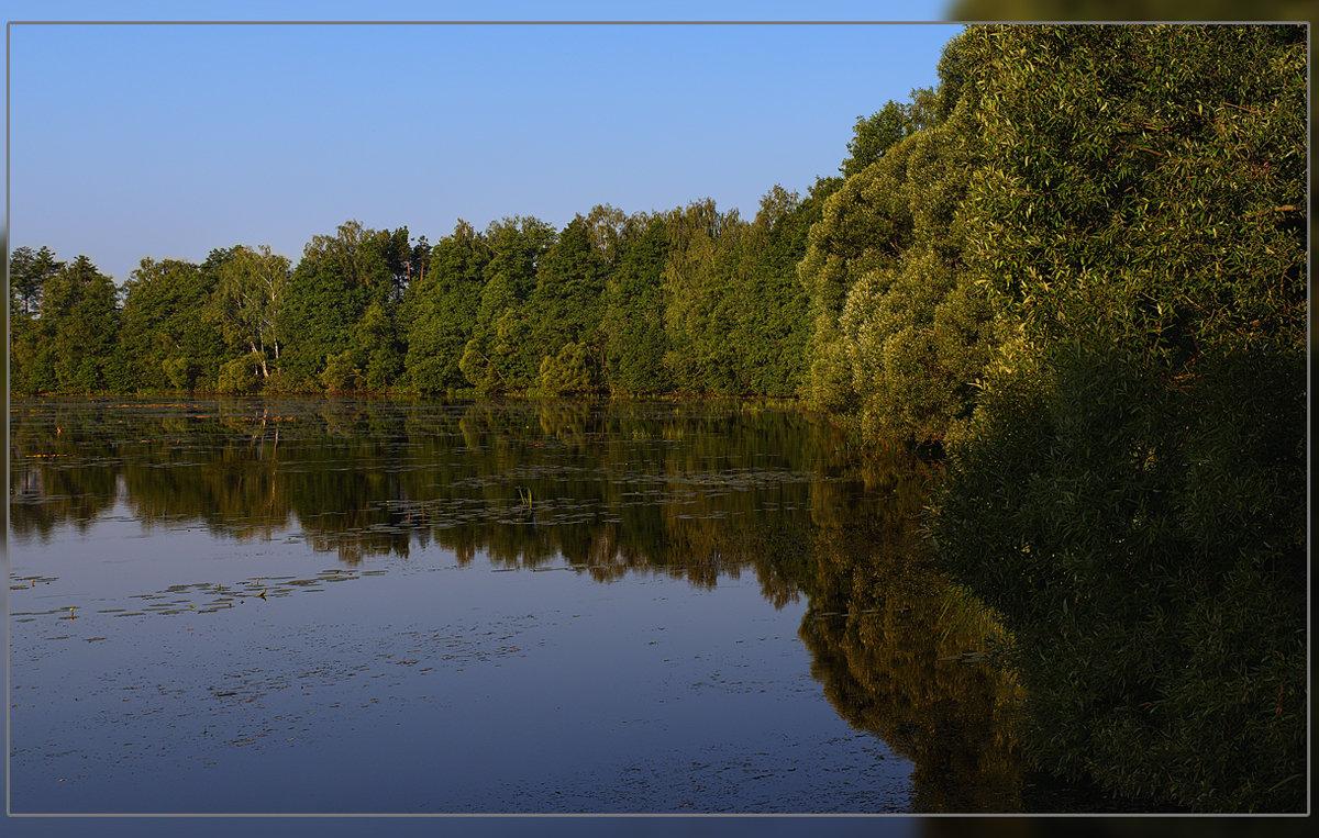 лесное озеро - serg Fedorov