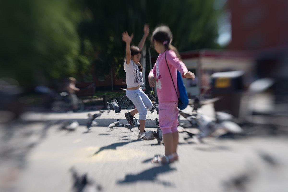 детвора и голуби - Дмитрий Пронь