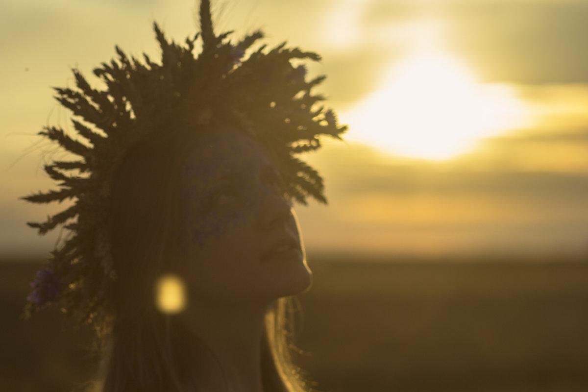 Подарок Солнца - Ольга Палей