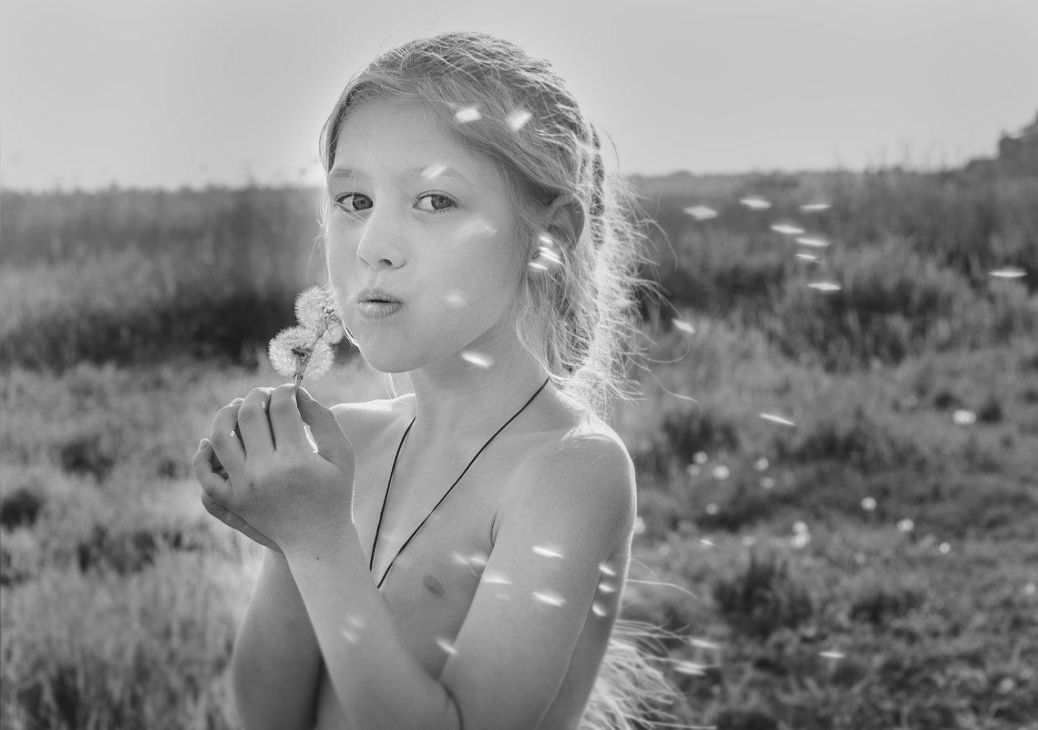 одуванчики - Алена Малых