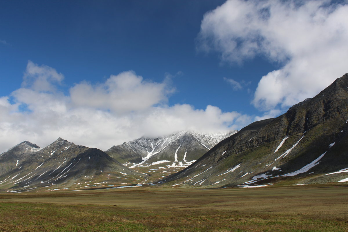 вчера шел снег, но сегодня лето... Полярный Урал - Лада Котлова