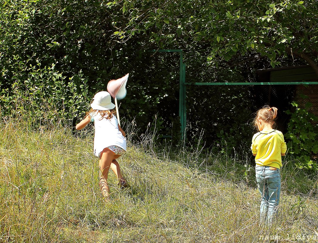 Ловля бабочек - Лидия (naum.lidiya)