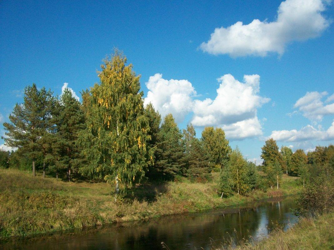 Уж небо осенью  дышало.... - Виктор Елисеев