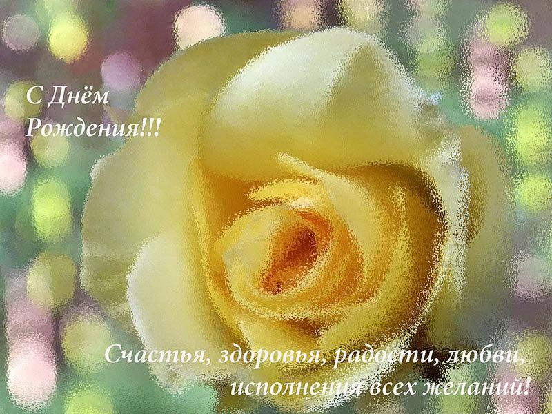Поздравление с днём рождения регина 81