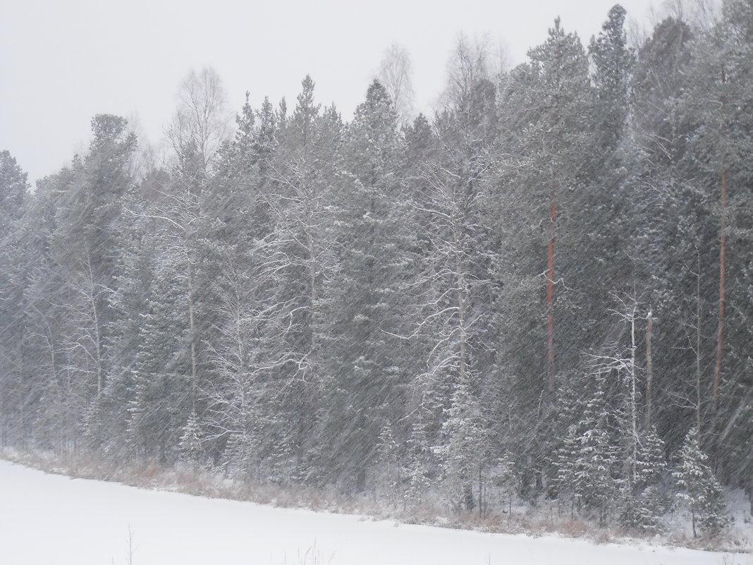 Снегопад, снегопад,... - Наталья Пендюк Пендюк