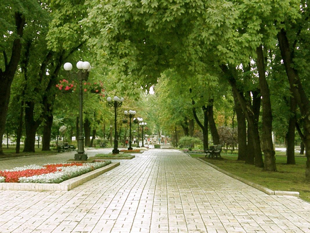 бульвар донецк фото
