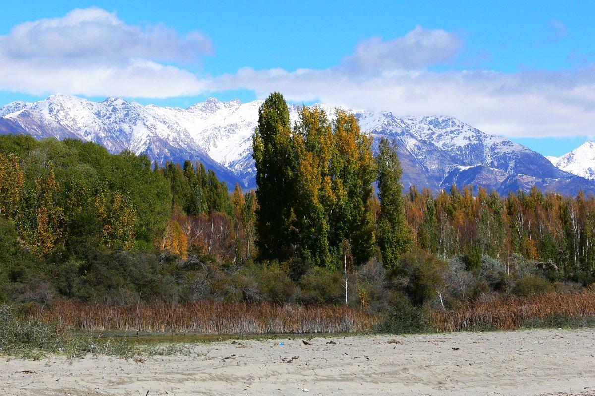 Kyrgyzstan - Schbrukunow Gennadi