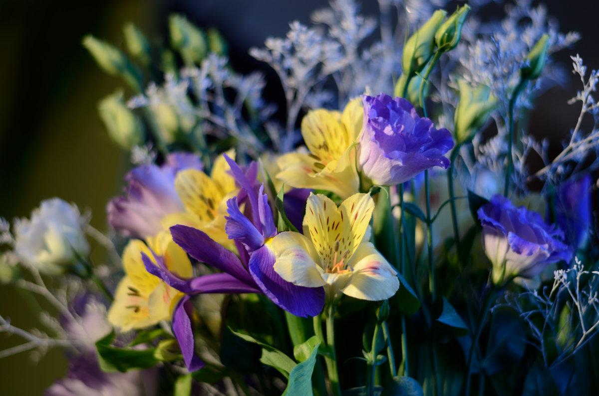 Весна - Алексей К