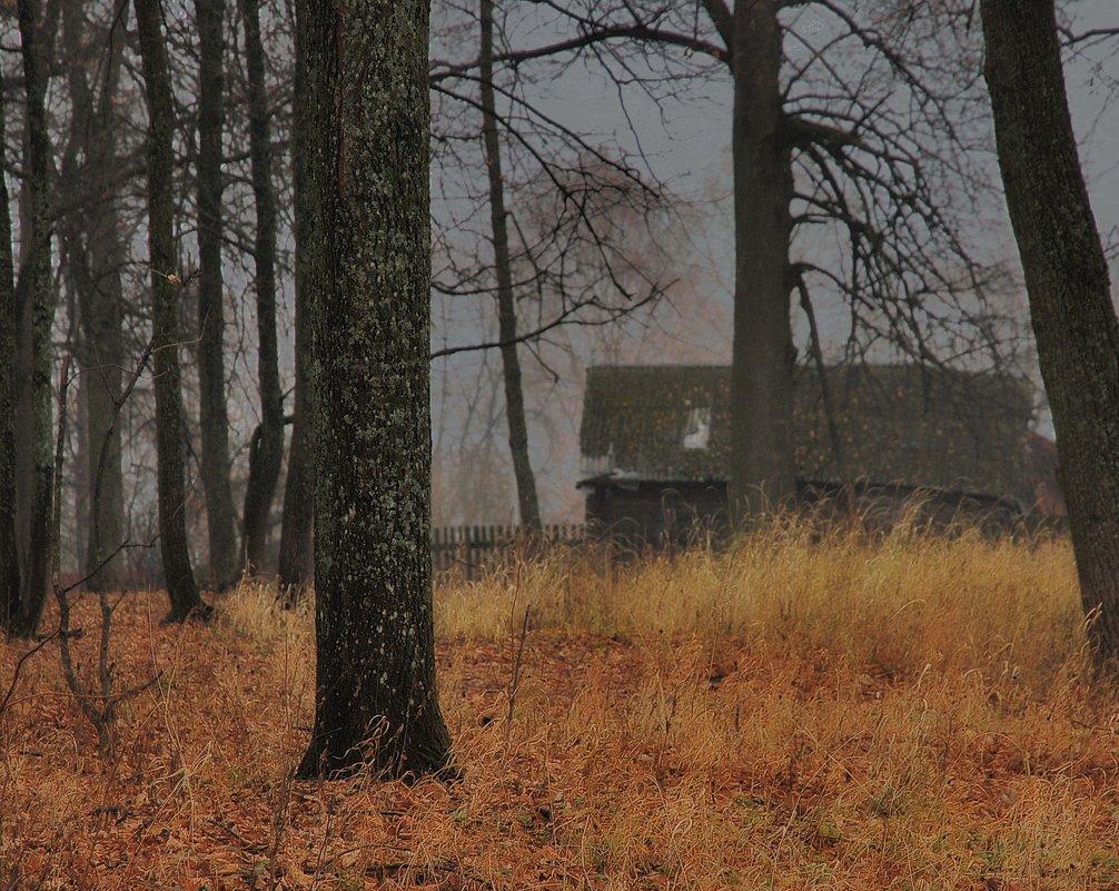 про Ноябрь - sergej-smv