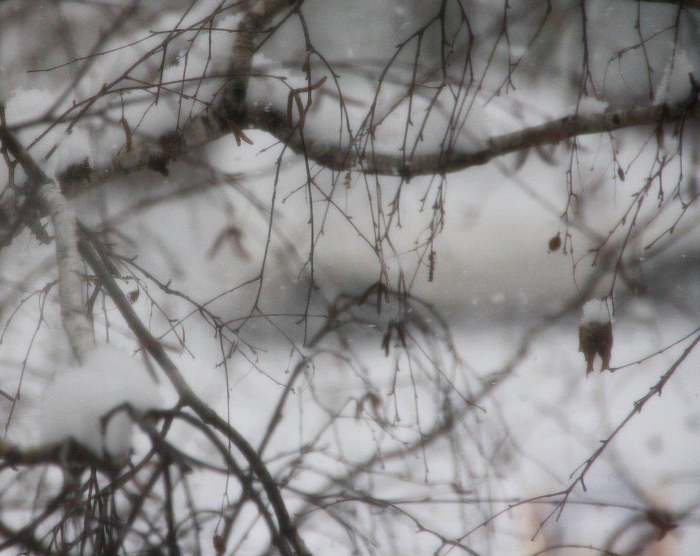 Падает  снег... - Валерия  Полещикова