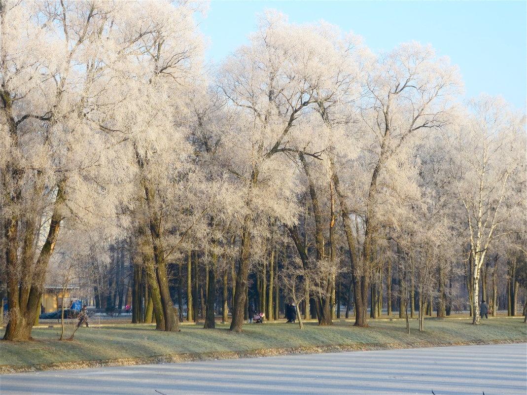 красивый зимний день - Елена