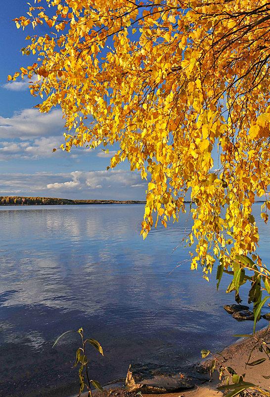 золото осени - Galina