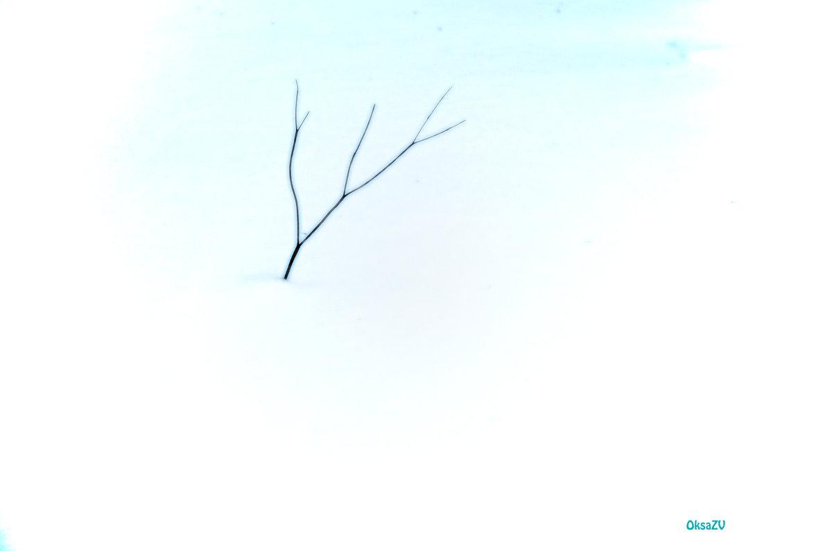 одиночество - Оксана Грищенко