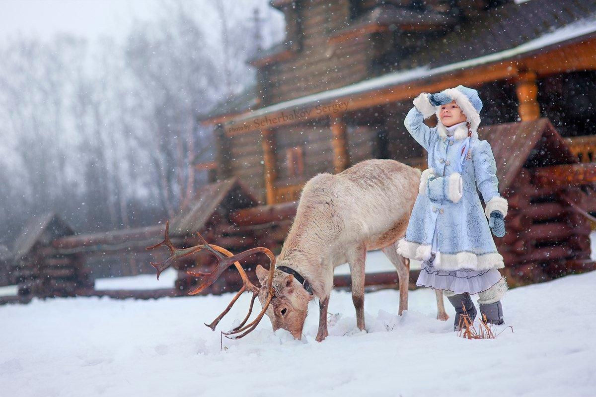 Морозко - Сергей Щербаков
