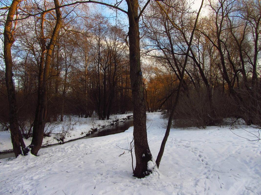 IMG_1607 - Первый день февраля - Андрей Лукьянов