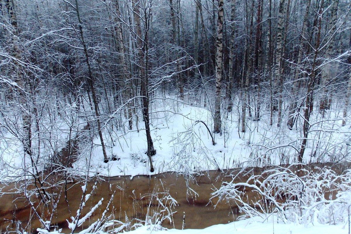 Канава из торфяного болота - Фотогруппа Весна - Вера, Саша, Натан