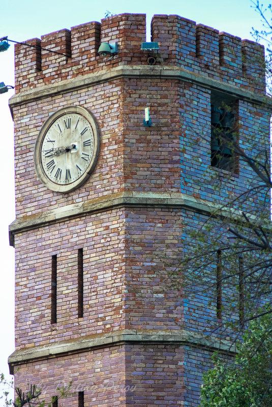 Башня с часами - Дмитрий Перов