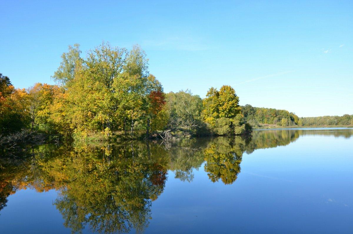 Зеркальное отражение в озере - Милешкин Владимир Алексеевич