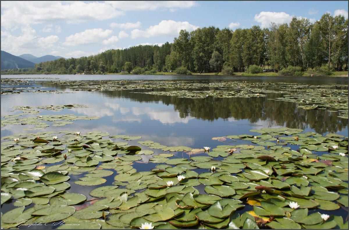 Озеро Манжерок - Наталия Григорьева