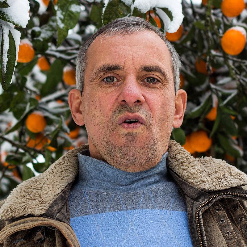 снег и мандарины - Александр Волков