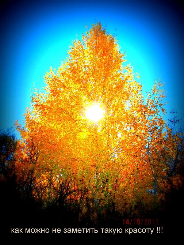 Осень - Анатолий Мартынюк
