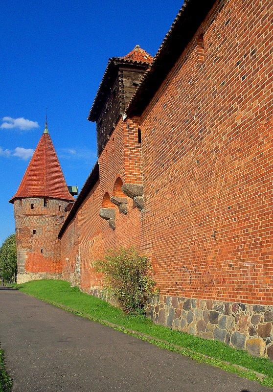 Оборонительная стена замка Мальборк - Сергей Карачин