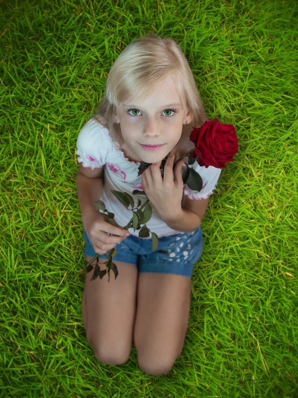 Ангелок и роза - Светлана Шаповалова