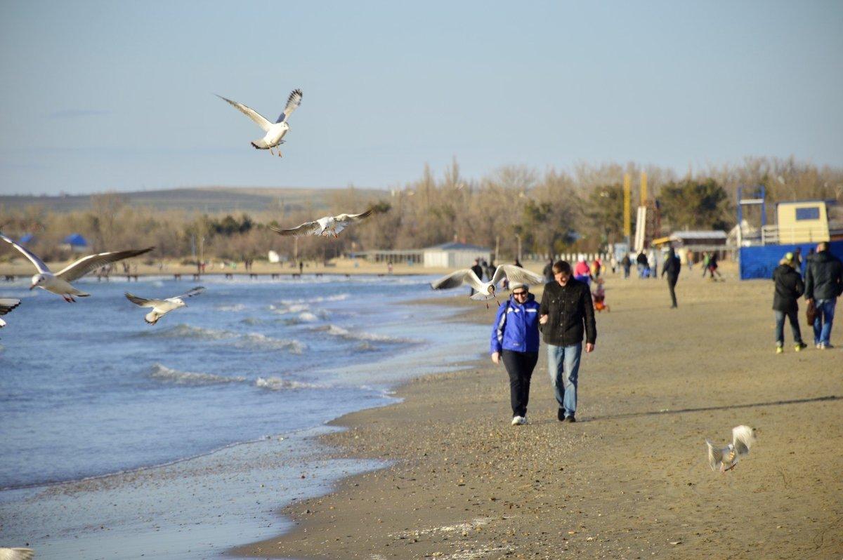 Прогуливаясь вдоль берега ... - Елена Нор
