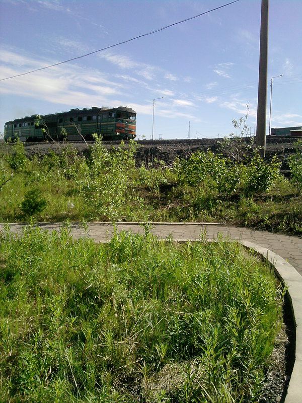 Заполярное лето ...и локомотив - Kira Martin