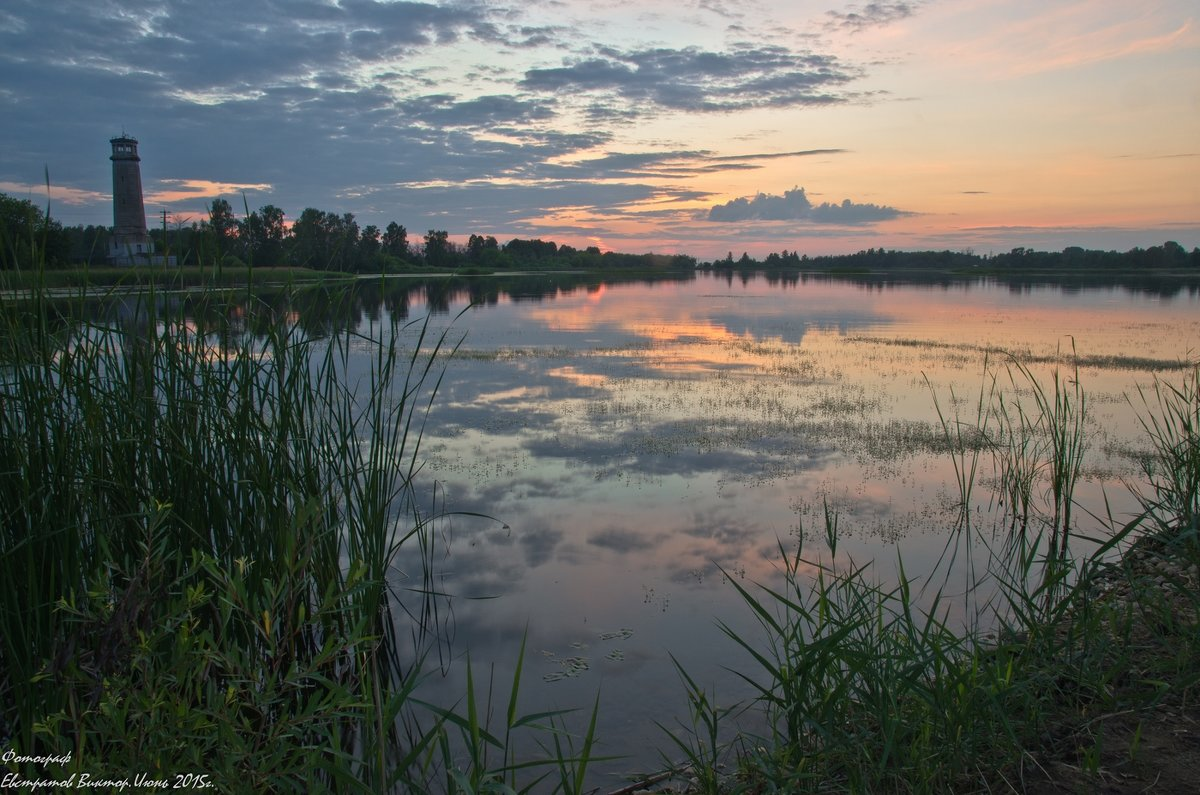 ОНФ выявил факт перевода озера и леса в подмосковной Дубне под застройку