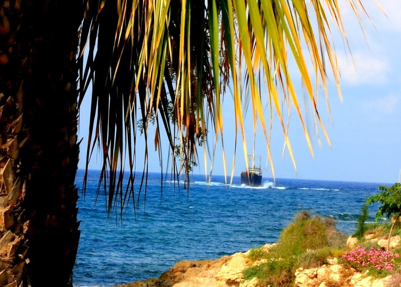 И я хочу в Бразилию к далеким берегам... - boris kantor