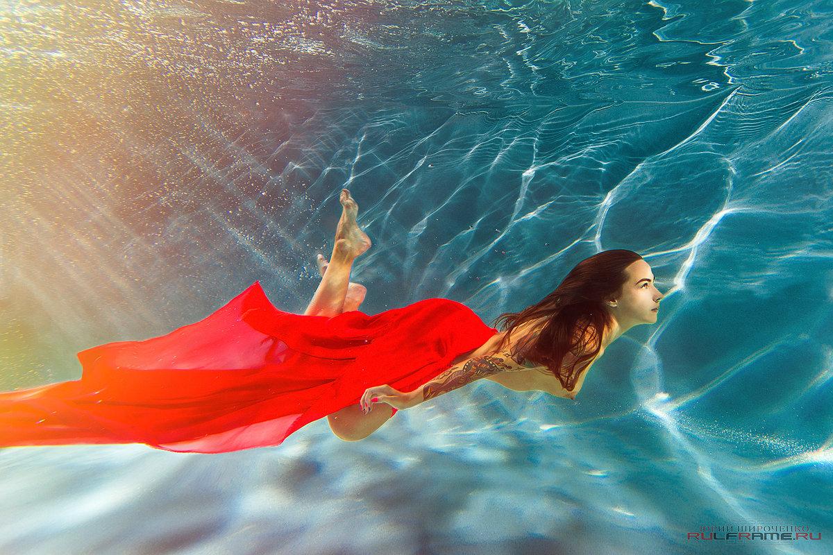 Жизнь под водой - Юрий Широченко
