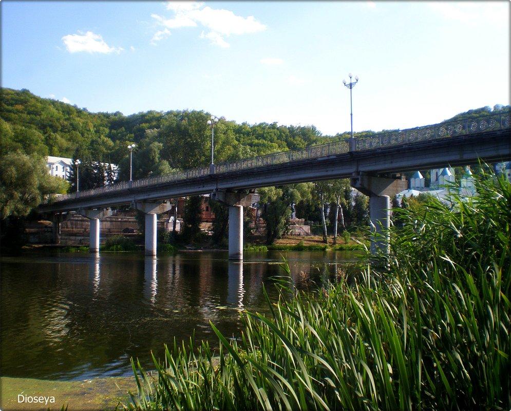 Мост через Северский Донец - Татьяна Пальчикова