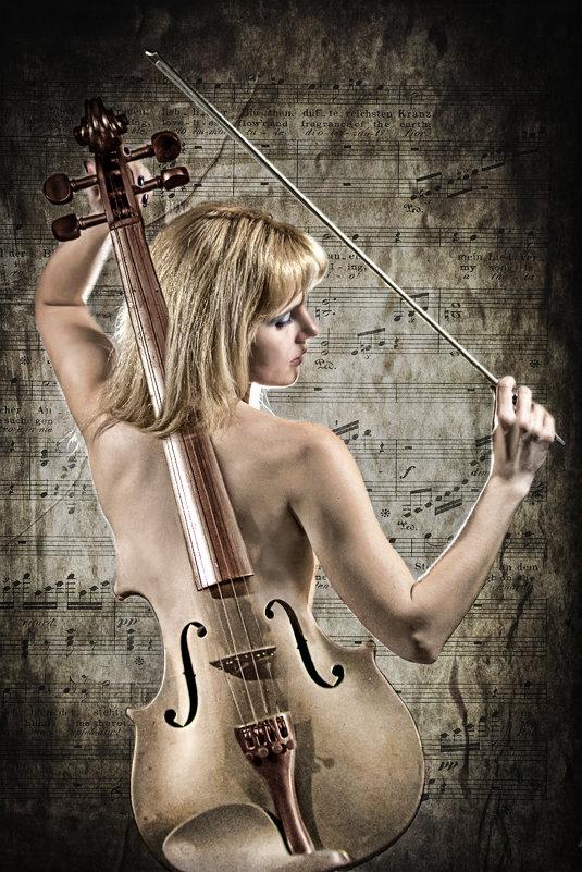 Скрипка и красота
