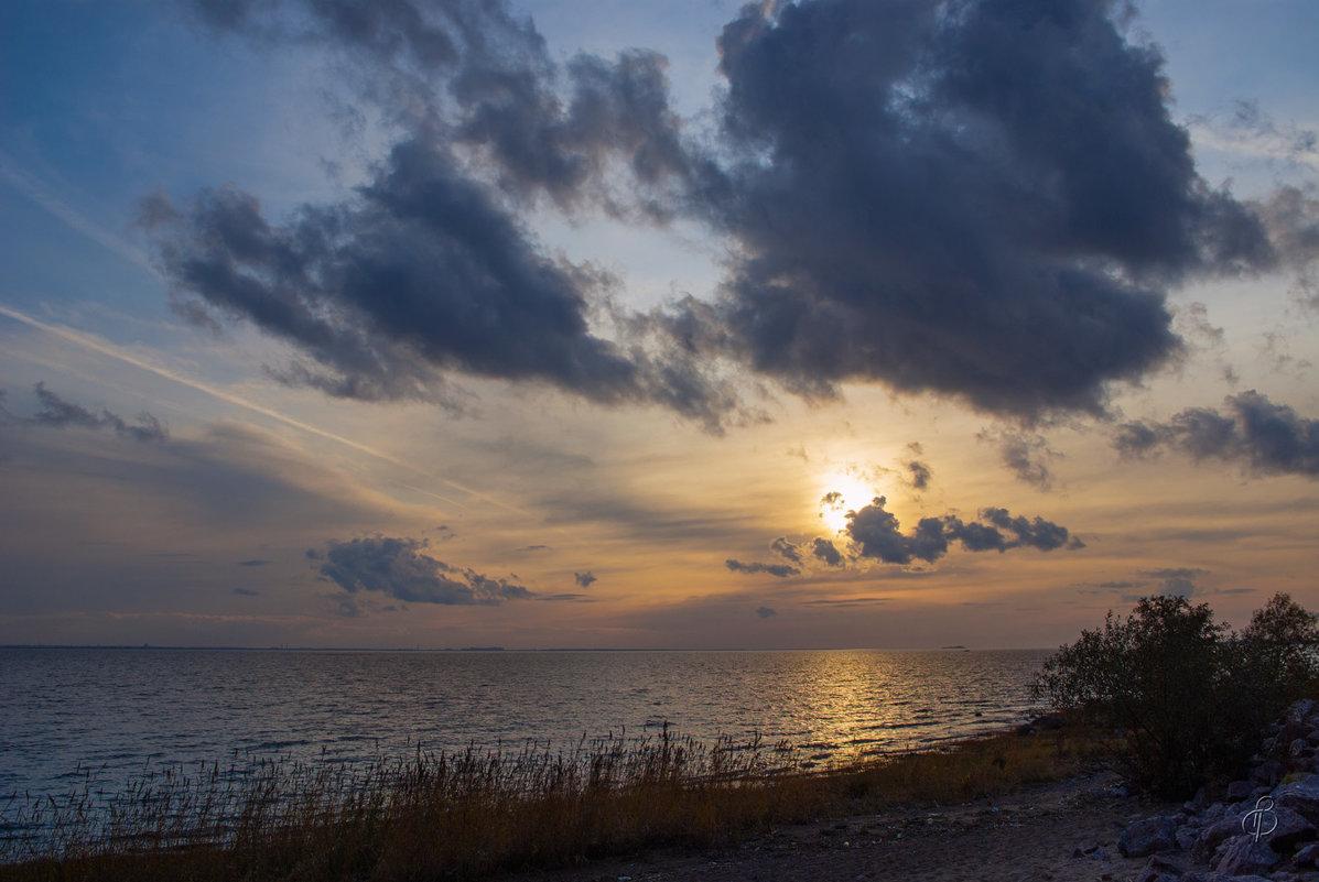 Вечер на заливе - Виталий