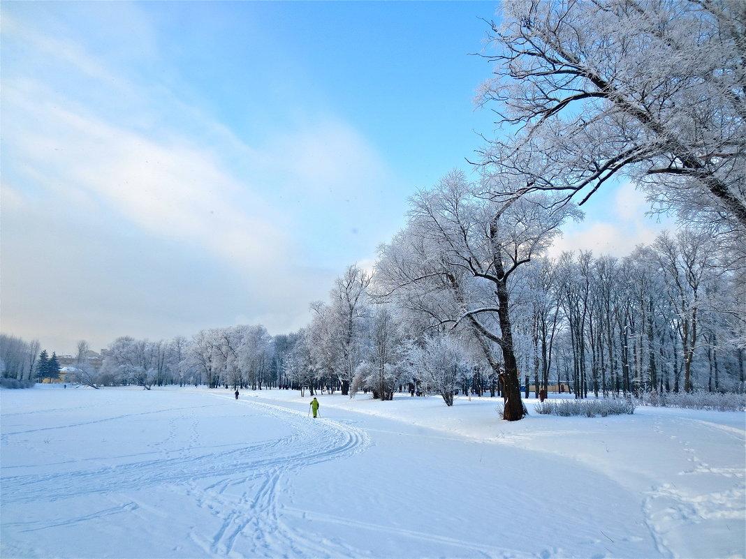 лыжня - Елена