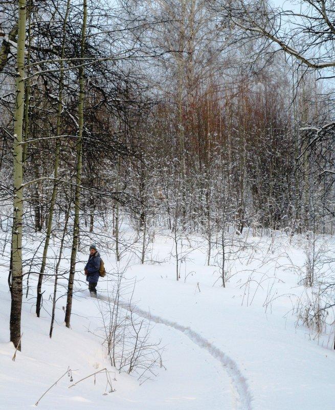 В лесу - Galaelina ***