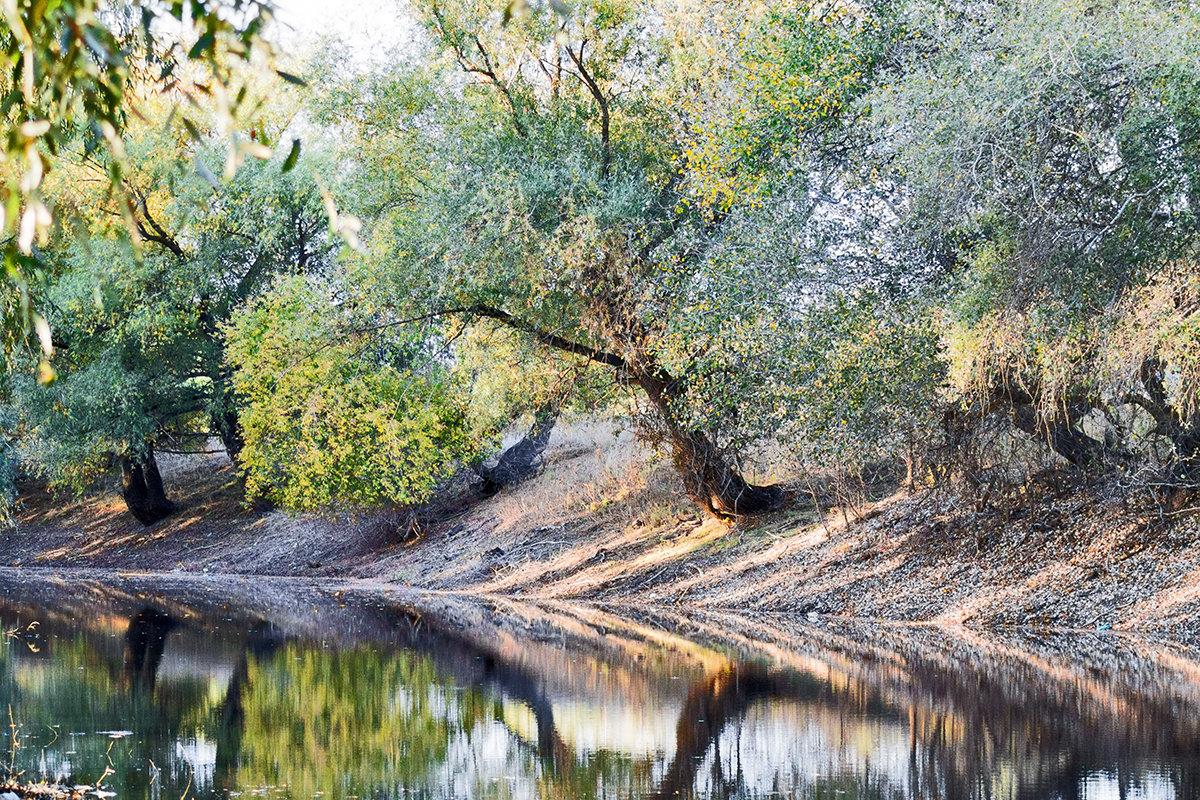 Осень - Андрей Хасаншин