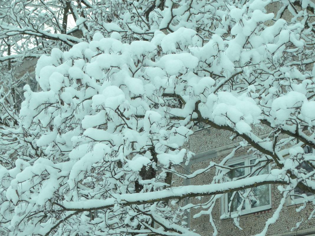 снежный город... - Михаил Жуковский