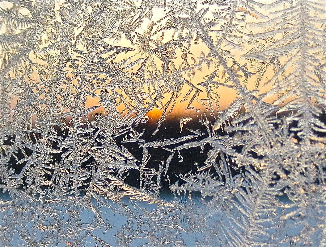морозный узор - Елена