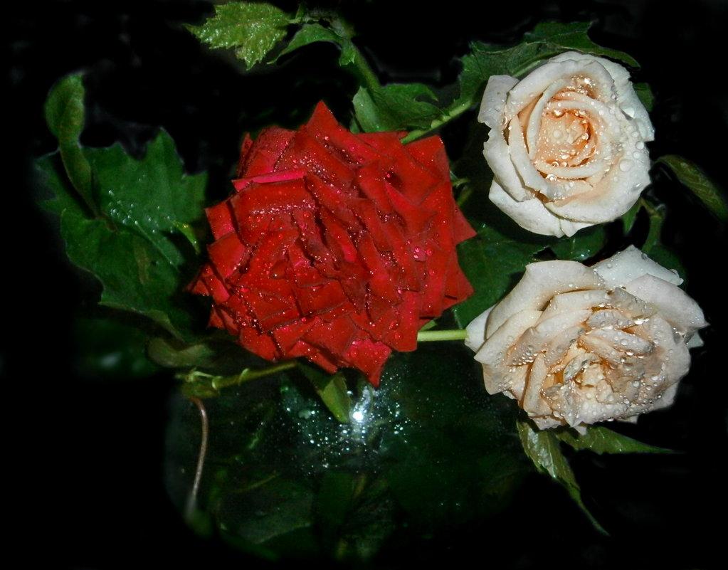 Мне  подари   букет из  роз ...без  слов... - Людмила Богданова (Скачко)