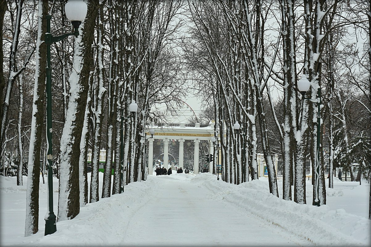 Арка парка - Ирина Сивовол