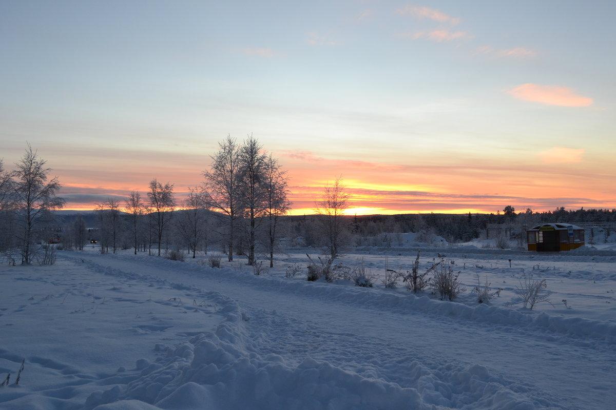 Cнежные дни - Ольга