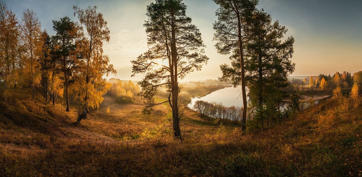 Раннее утро - Виталий Истомин
