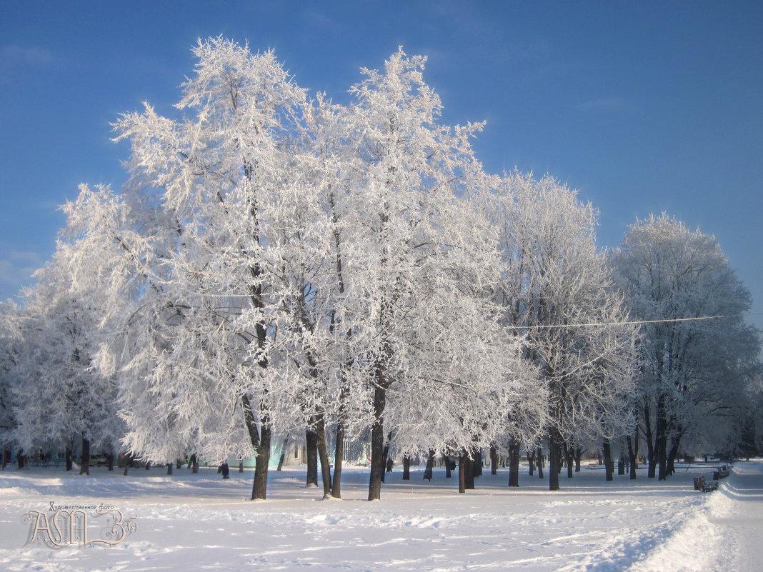 """А вот так зима """"красит"""" мой город. - Анатолий Михайлович"""