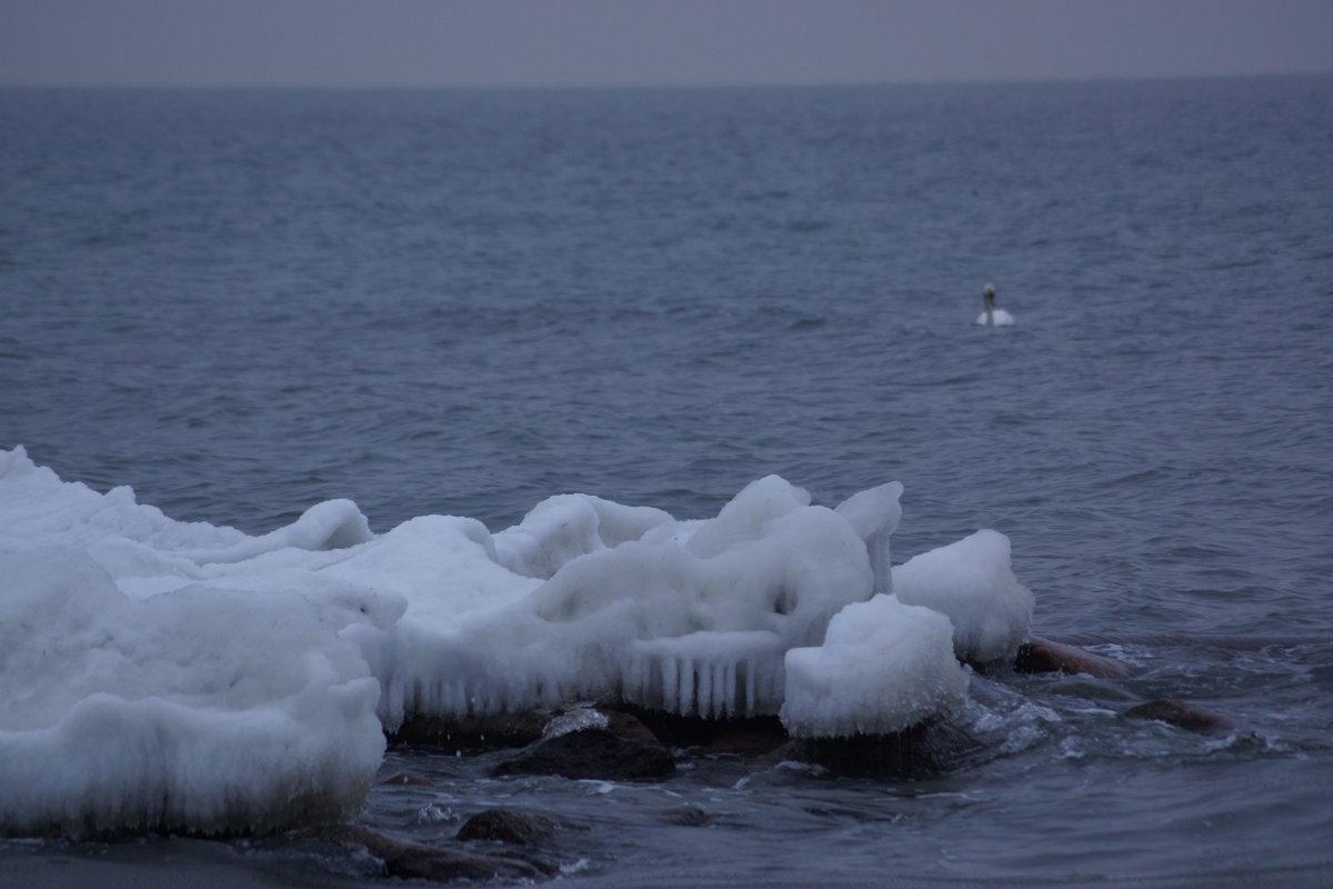 Море и лед. - Максим Воробьев