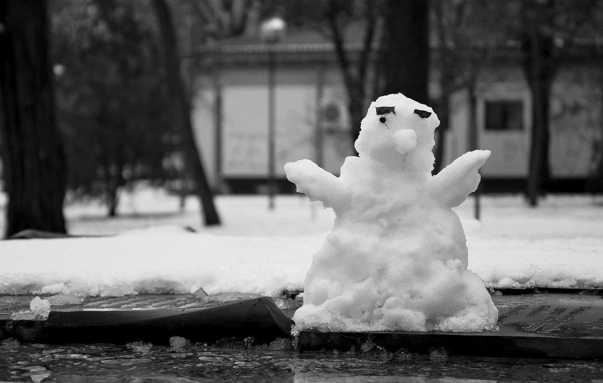 Снеговик,  переживший оттепель - Игорь Попов