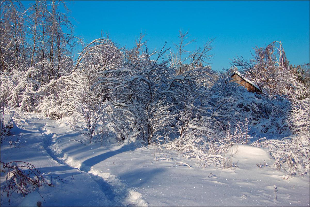 Пришла зима! - Елена Ерошевич