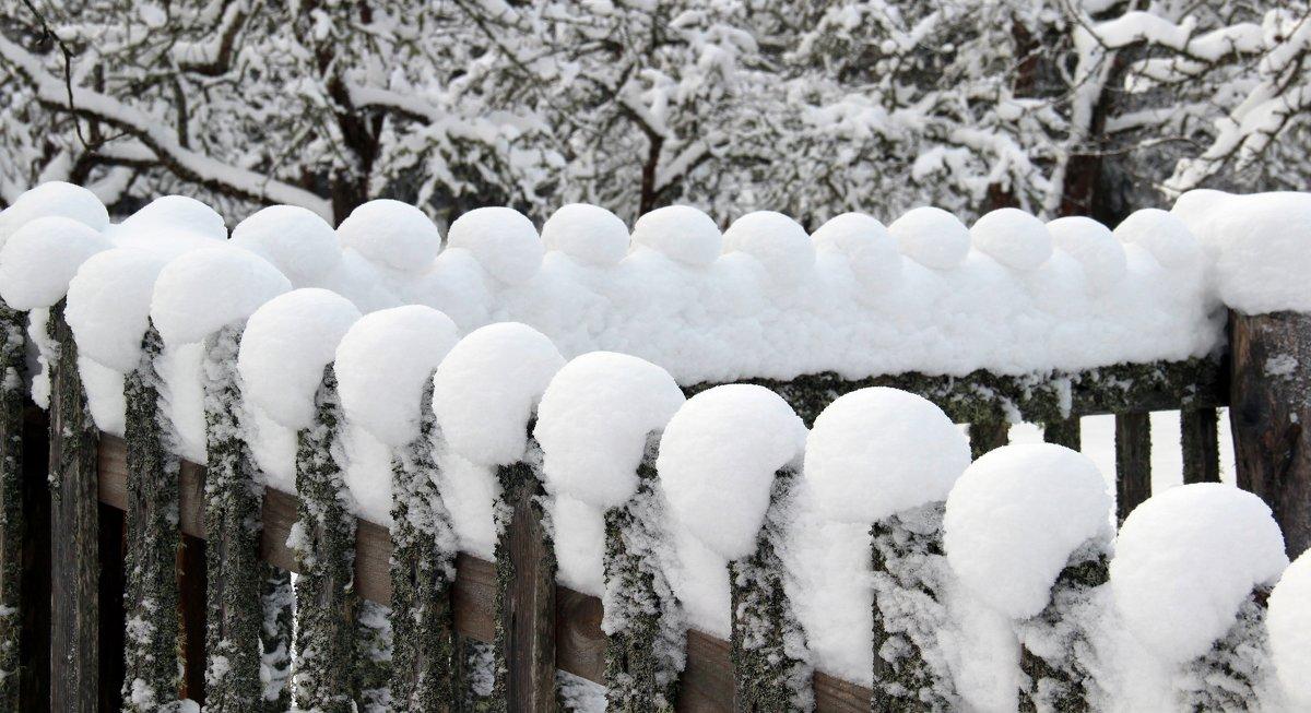причуды зимы - Нина